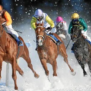 White Turf St. Moritz - International Horse Races on Snow since 1907