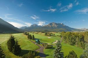 The Engadine Amateur Championship