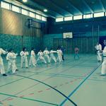 Kurs: Karate Engiadina